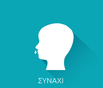 SINAXI new